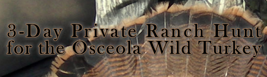 3-Day Private Ranch Hunt for the Osceola Wild Turkey
